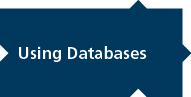 Using Databases, written on dark blue puzzle piece